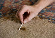 Free Oriental Rug Stain Removal Guide